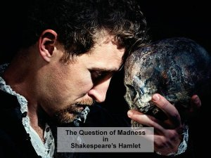 Madness in Shakespeare's Hamlet